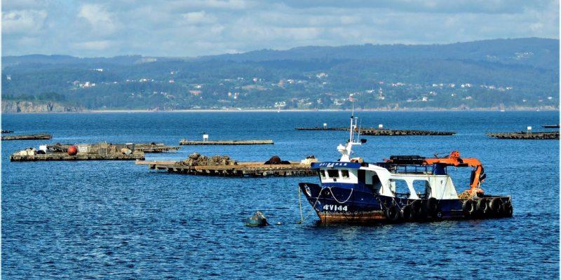 Barco pesquero y bateas en la Ría de Arousa